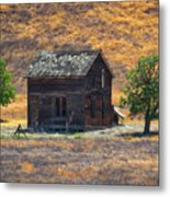 Calico Grass  Metal Print
