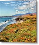 California Coast Wildflowers On Cliffs Metal Print