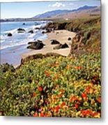 California Coast Wildflowers Vertical Format Metal Print