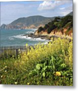 California Coast With Wildflowers And Fence Metal Print