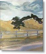 California East Bay Oaks Metal Print