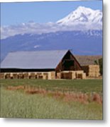 California Hay Barn Metal Print