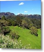 California Highlands Metal Print