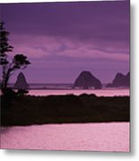 California, Sonoma Coast Metal Print