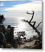 California Sun Metal Print