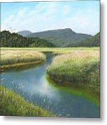 California Wetlands 2 Metal Print