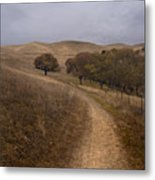 California Winter Metal Print