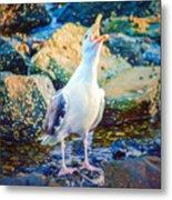Call Of The Gull Metal Print
