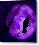 Calling Out To The Night Metal Print