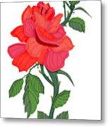 Calypso Rose Metal Print