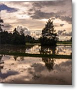 Cambodian Countryside Rice Fields Reflection Metal Print
