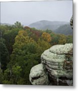 Camel Rock Metal Print