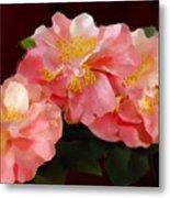 Camellias 1cmods1b Digital Painting Gulf Coast Florida Metal Print