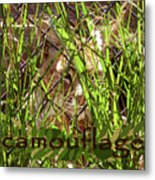 Camouflage Metal Print by Methune Hively