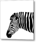 Camouflaged Profile Metal Print