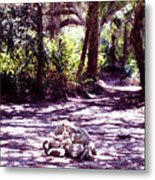 Camp Fire Past Metal Print