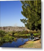 Camp Holly On The St Johns River In Florida Metal Print
