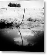 Campaspe River In Black And White Metal Print