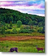 Canaan Valley Evening Impasto Metal Print