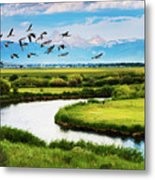 Canada Geese Entering Idaho's Teton Valley Metal Print
