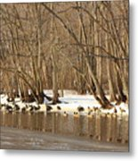 Canada Geese On Concord River Metal Print by John Burk