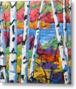 Canadian Birches By Prankearts Metal Print