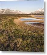 Canadian Tundra In Evening Light. Metal Print