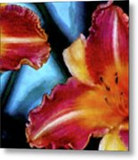 Candied Daylilies 1230 Dp_2 Metal Print