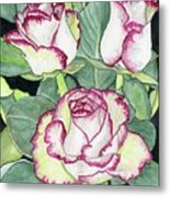 Candy Cane Roses Metal Print