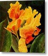 Canna Lilies Metal Print by Vickie Voelz