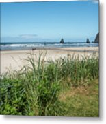 Cannon Beach And Purple Bloom Metal Print