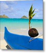 Canoe And Coconut Metal Print