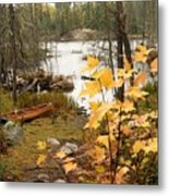 Canoe At Little Bass Lake Metal Print by Larry Ricker