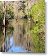 Canoing On Hillsborough River Metal Print