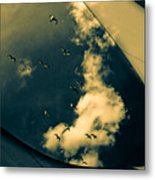 Canvas Seagulls Metal Print