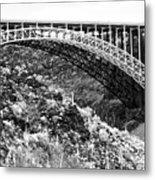 Canyon Bridge Metal Print
