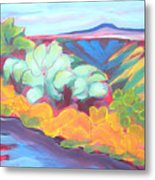 Canyon Dreams 18 Metal Print