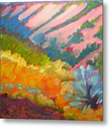 Canyon Dreams 7 Metal Print