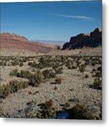 Canyon Lands Metal Print