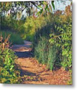 Canyon Path II Metal Print