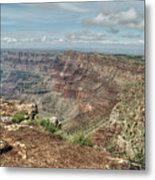 Canyon View From Navajo Point Metal Print