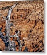 Canyon View Nevada Metal Print