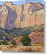Canyon Walls Of Zion National Park Metal Print