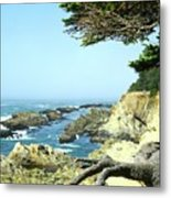 Cape Arago, Or. Metal Print