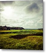 Cape Cod Marsh 1 Metal Print