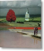 Capital Fields Metal Print
