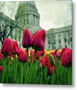 Capitol Tulips Metal Print