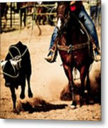 Capture Metal Print