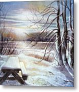 Capturing The Snow Metal Print
