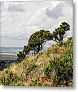 Capulin Volcano View Panorama New Mexico Metal Print